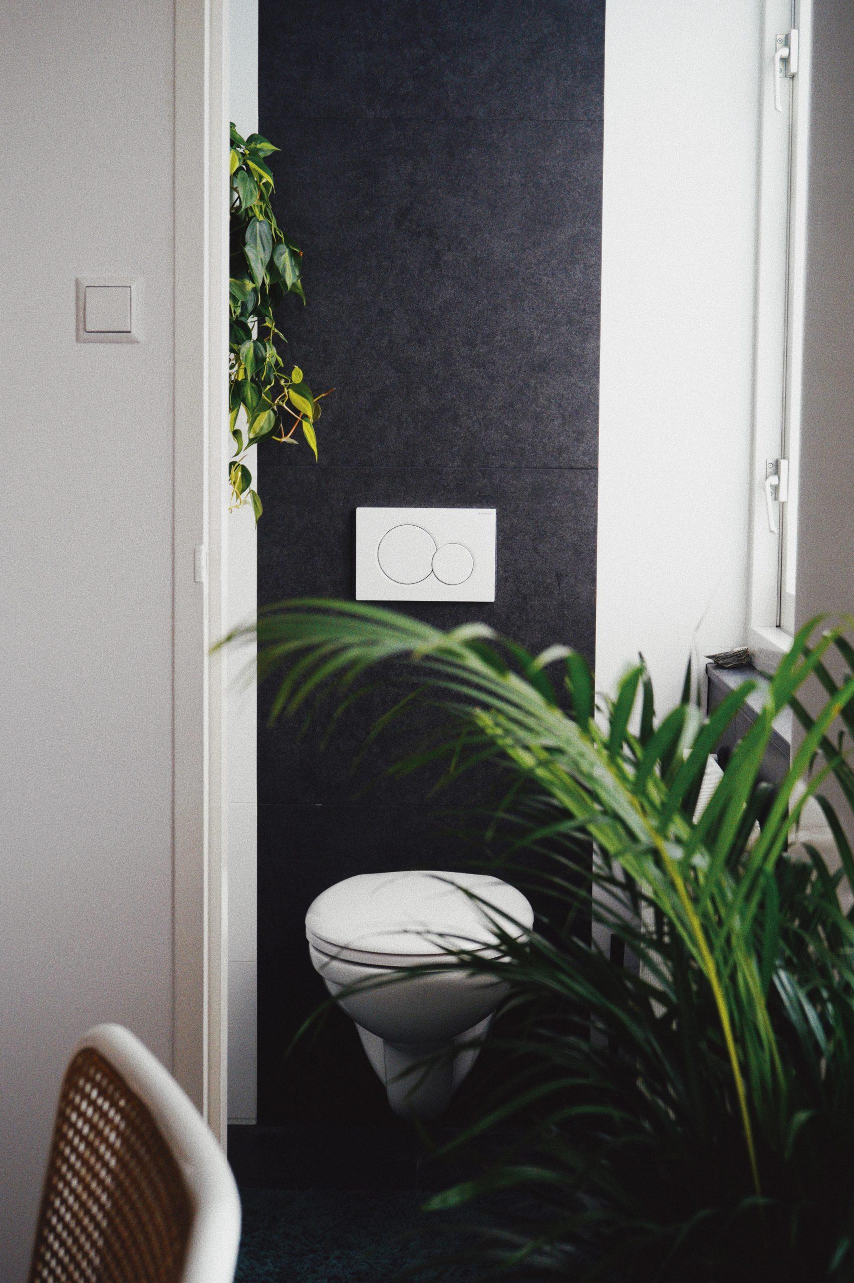 Stuhllehne und pflanze im Vordergrund toilette vor grauer Fliesenwand im hintergrund