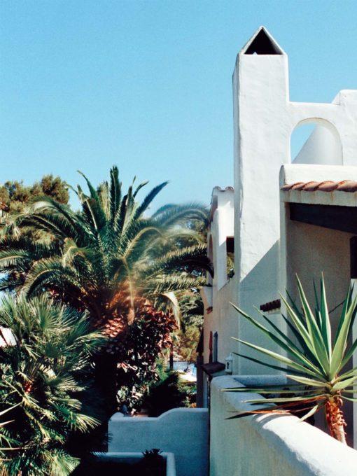 Ferienhaus Mallorca Palmen blauer Himmel